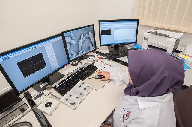Electron scanning microscope images, Electron microscope images